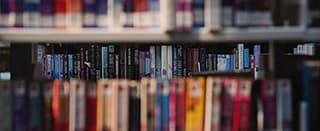 Lisa Koubou's books