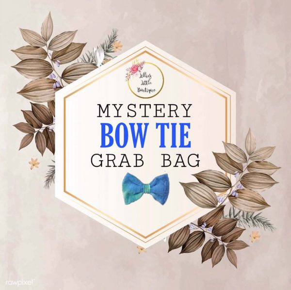Mystery Bow Tie Bag