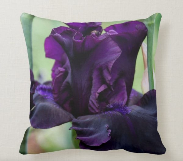 Purple Iris Pillow